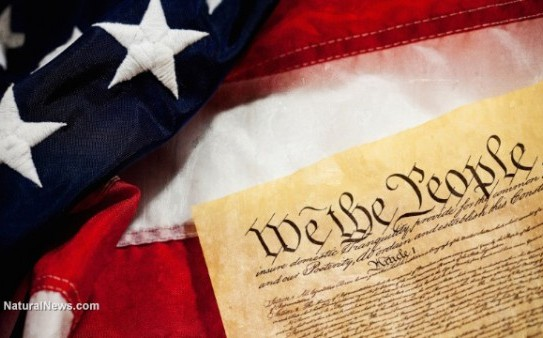 Constitution-We-The-People-American-Flag-e1457470593246